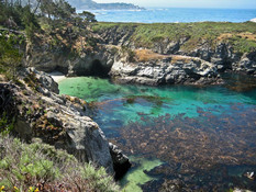 Once Named One of the Seven Natural Wonders of the World, Point Lobos 15 minutes South of us