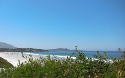 With lots of places to have an afternoon picnic or watch the sunset, Carmel Beach is a treat for everyone.